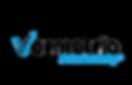 vormetric logo.png