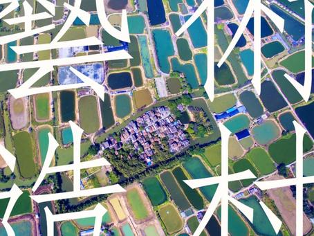 《藝術造村》Revitalising Village through Art Proposal approved