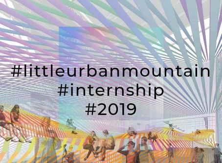 Internship @ littleurbanmountain 2019