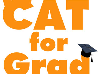 Проект «CAT for GRAD»
