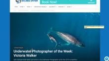 Q&A with Scuba Diver Magazine