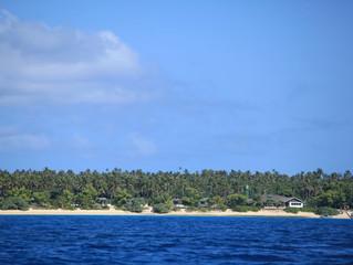 Accommodation on the Island