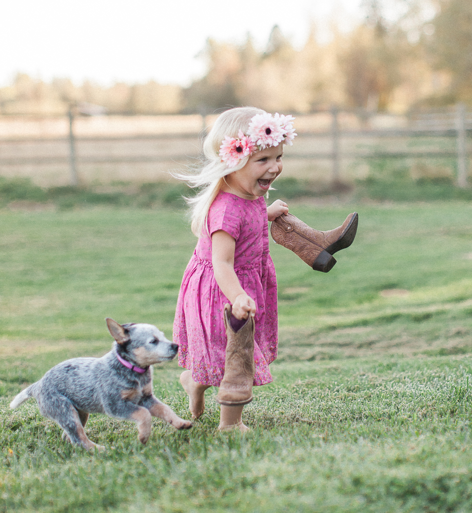 Heeler puppy, Tiffany Burke Photography, Seattle photographer.jpg