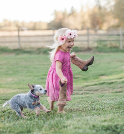 Heeler puppy, Tiffany Burke Photography, Seattle photographer.jpg
