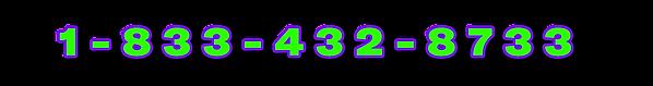 18334328733