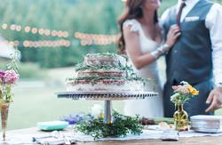 wedding cake, pine needle cake, pnw, seattle photographer, seattle wedding.png