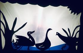 Adaptation du Vilain petit canard.