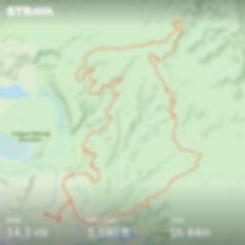 15 mile strava.jpg