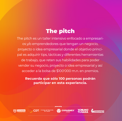 The Pitch Mx