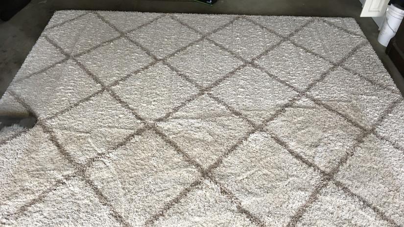 We clean area rugs.