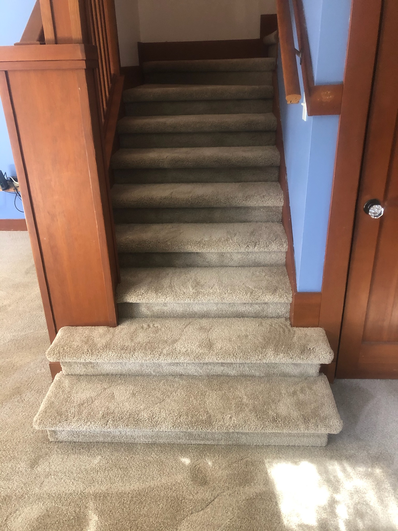 CUSTOM UPHOLSTERED STEPS