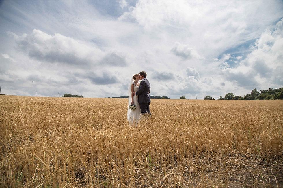 The bride and groom in corn feild