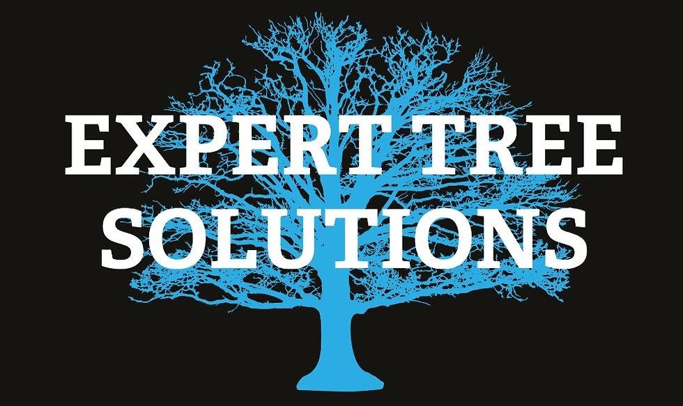 ETS Tree & Name Logo (Vector Art)_edited_edited_edited.jpg