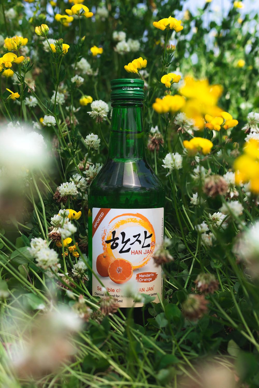 Hanjan Korean Soju in a field of flowers