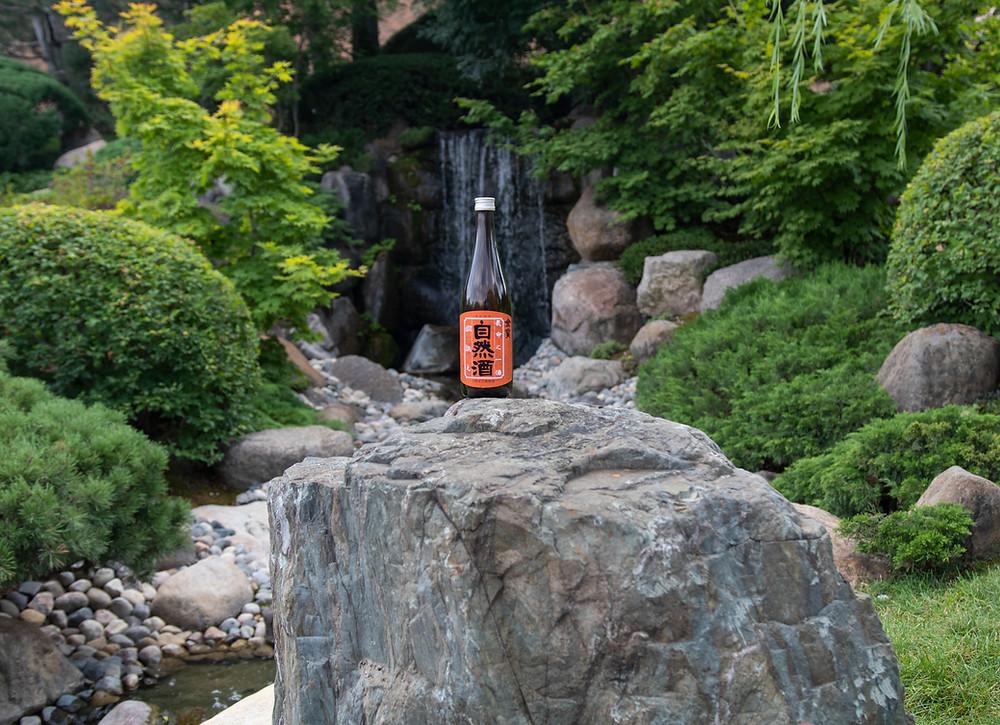 Japanese Sake at a Japanese Garden