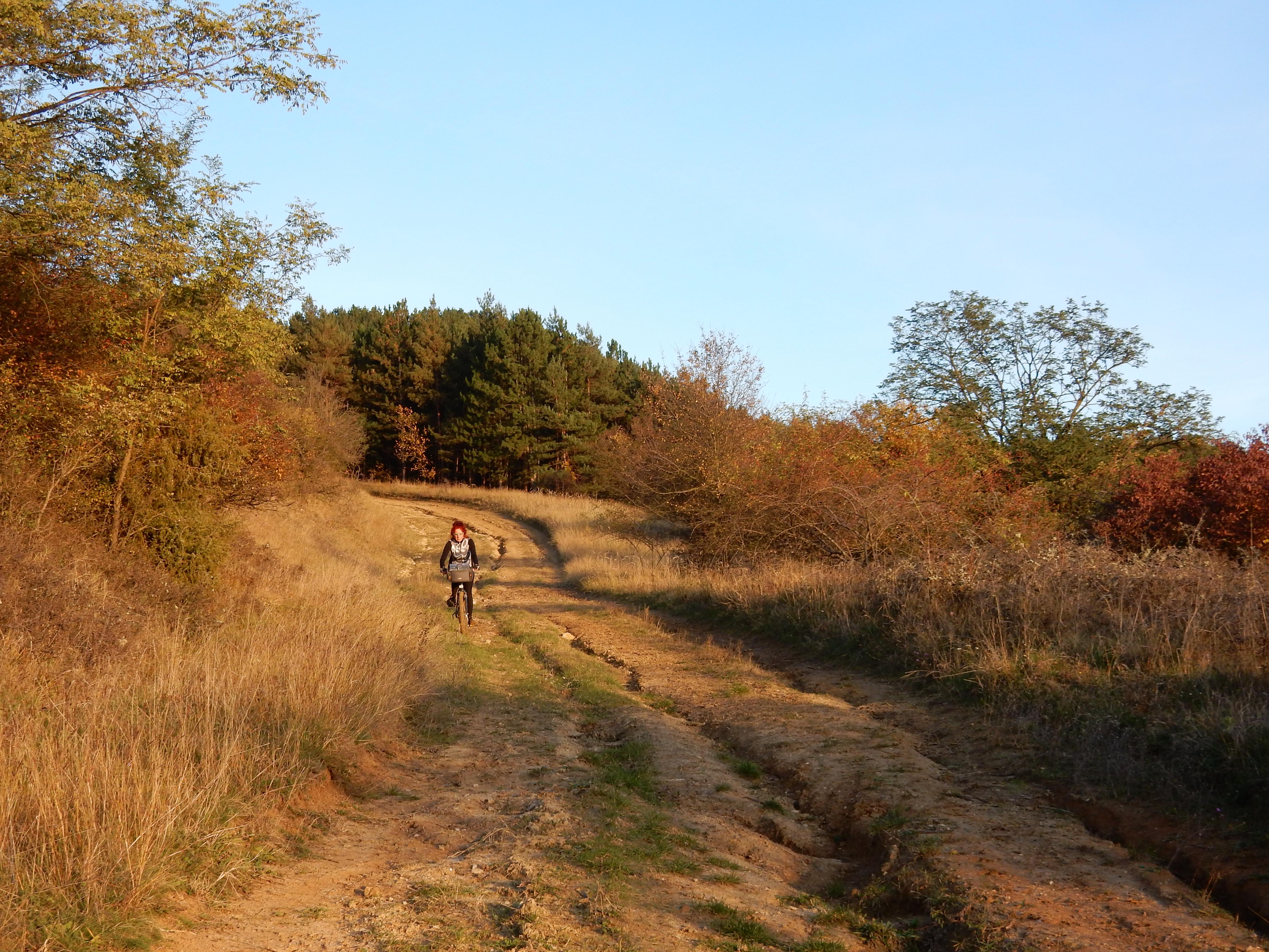 Met de mountainbike tijdens het gouden uur