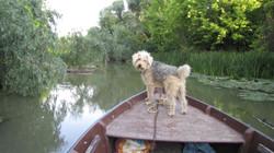Met een gids op de boot op het Tisza meer