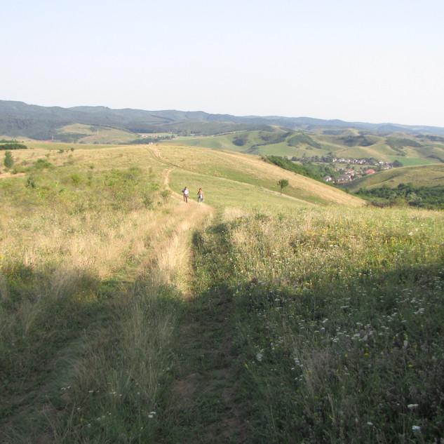 Een wandeling vlak achter de camping