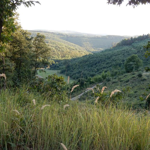 Uitzicht mountainbiketocht