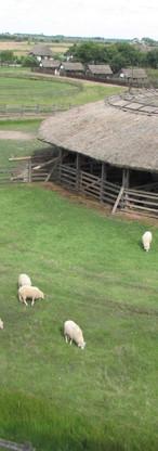 Hortobagy Open lucht museum met veel typisch Hongaarse dieren en stallen