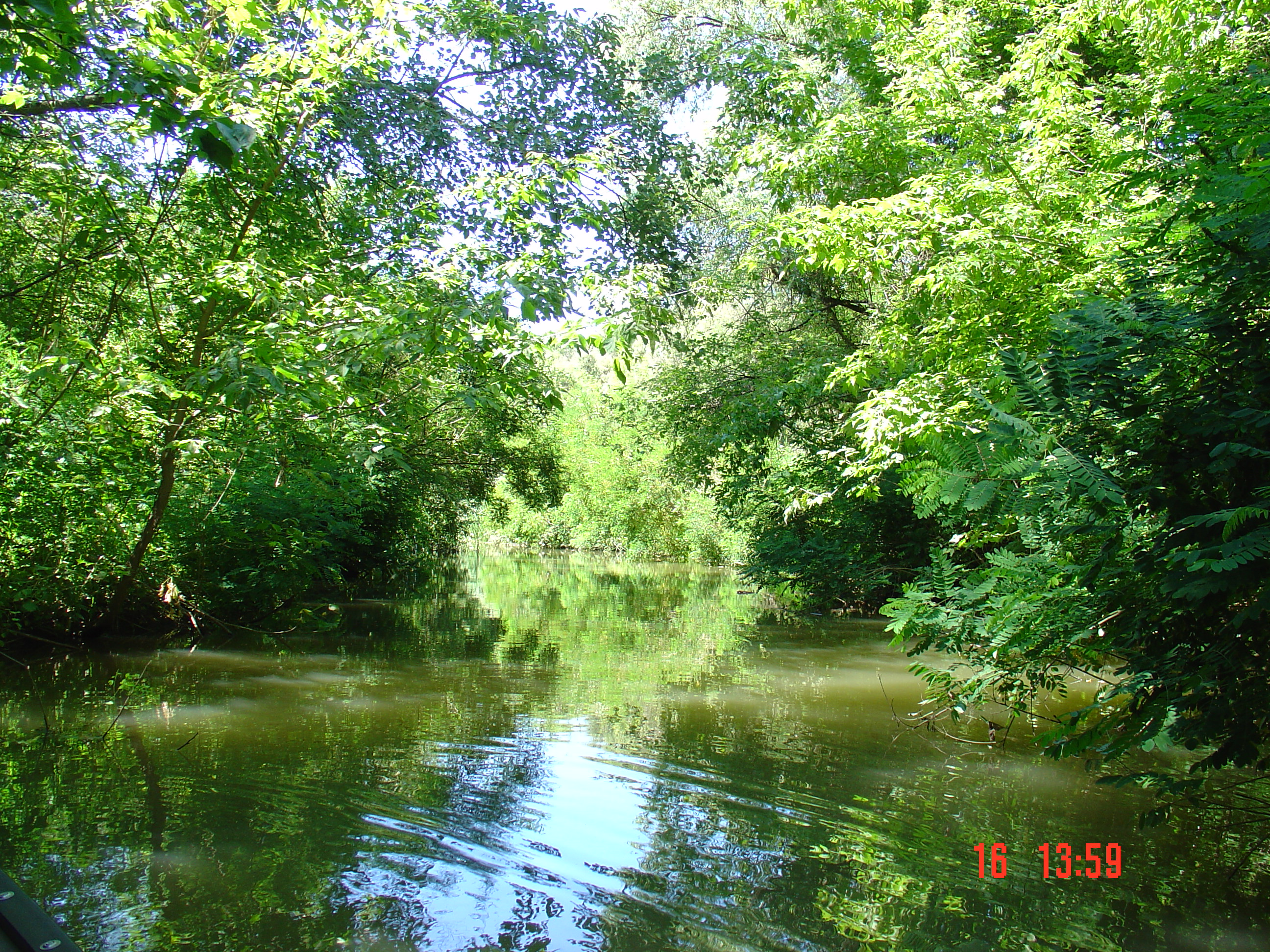 Kanotocht Tisza-To (Tisza meer)