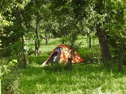 Tent op het terrein
