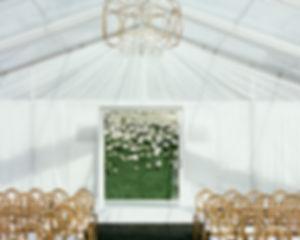 041319_CaitlinandJonathan_Ceremony8.jpg