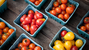 Farmer's Market Voucher Program 2020