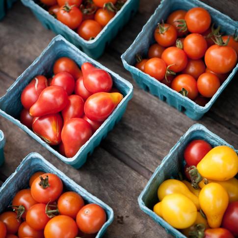 Tomates em caixotes, legumes