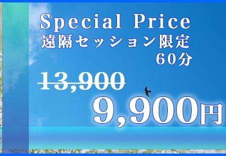 遠隔セッション:アカシックリーディング特別価格!で提供