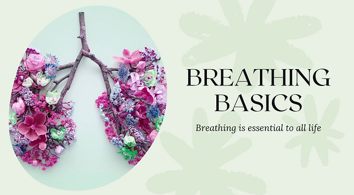 Breathing basics (1).png