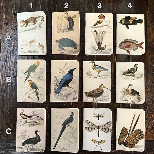Natural History Pocketbooks