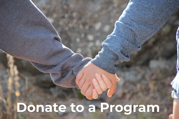 Donate to a program.png