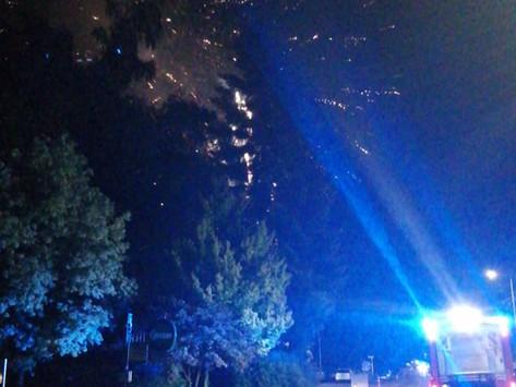 Sicherungdienst Donau in Flammen