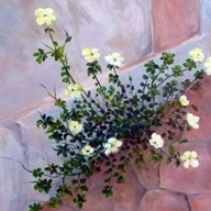 Atrapada en la 2da. Avenida, 2001. Óleo sobre lienzo. 80 x 80 cm