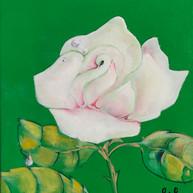 Rosa rocío, 2014. Óleo sobre lienzo. 30 x 24 cm