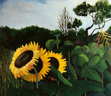 Girasoles en Chaco. 2003. Óleo sobre lienzo. 80 x 80 cm