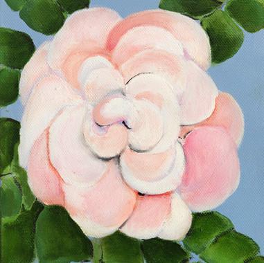 Verde rosa y rocío. 2014 Óleo sobre lienzo. 20x20 cm