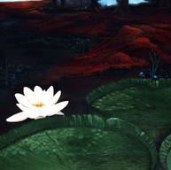 Flor del Irupe. 2004. Óleo sobre lienzo. 60 x 80 cm