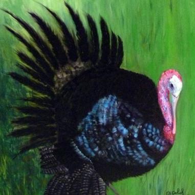 Pavo Black. 2011. Óleo sobre lienzo. 90 x 70 cm