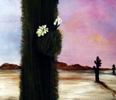 Cardón en flor. 2004. Óleo sobre lienzo. 80 x 80 cm