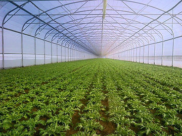 Sere,solarii,incalzire,greenhouses,tunnel.invernaderos,serre