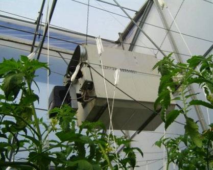 generator aer cald cu combustie directa 100kw