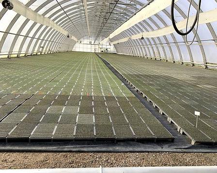 sistem de încălzire solar de răsaduri