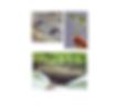 substrat din nuca de coco s,substrat cocos,substrat sere,sunstrat solarii,sere,solatii,irigatie hidroponica,irigatie ecologica,cultura tomate,cultura in sera,turba,turba ecologica,ecologic,cultura ecologica,sere tomate,sere de tomate,sere rosii,tomate coco
