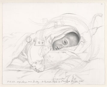 This unusual, touching, and sometimes frightening collection of drawings depicts the fight for life of Max. Max was a small, 13-week premature infant. These drawings represent Max's experience as seen through the 'mind's eye' of his anguished father