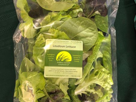 Lettuce Chat, 06/25/21, Loudoun Lettuce Blend