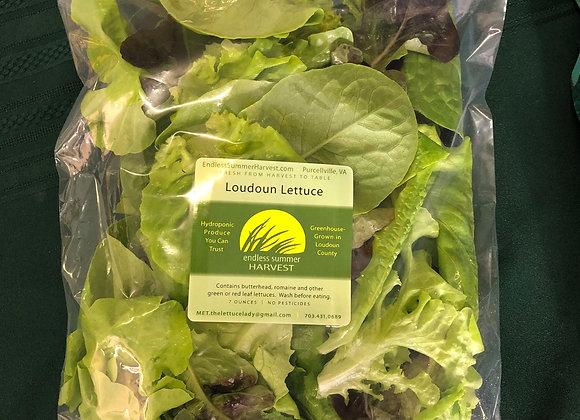 Loudoun Lettuce 7oz. Bag