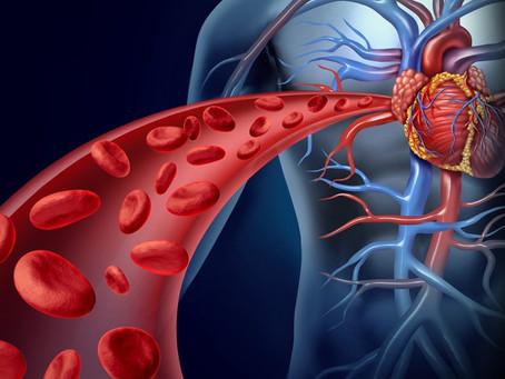 Colesterol; ¿amigo o enemigo?