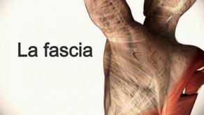 Fascia y Osteopatía